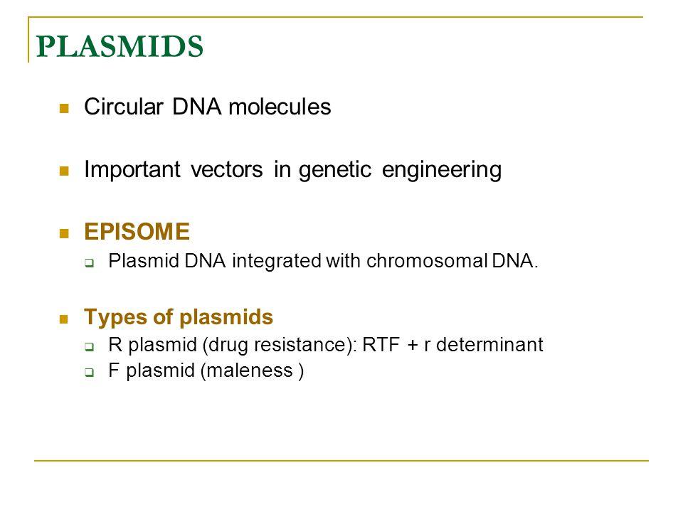 PLASMIDS Circular DNA molecules