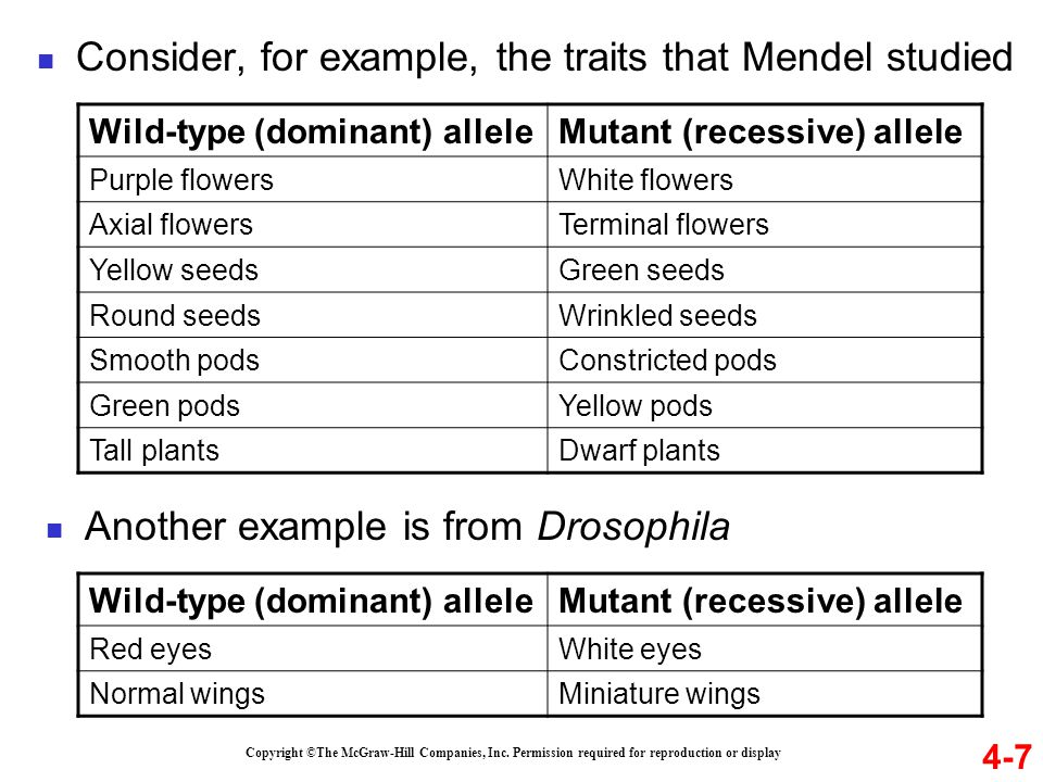 Consider, for example, the traits that Mendel studied