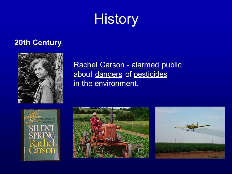 History 20th Century.