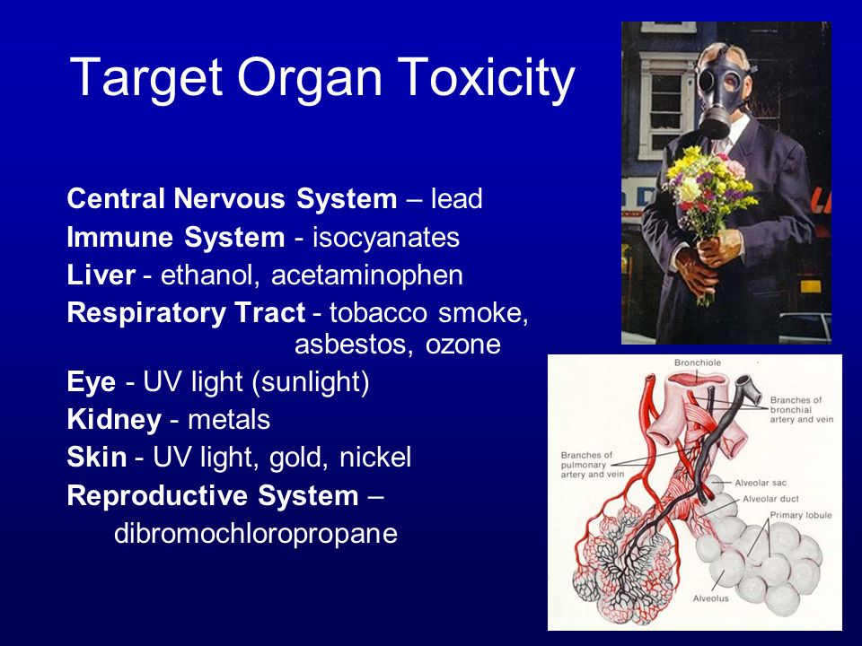 Target Organ Toxicity Central Nervous System – lead