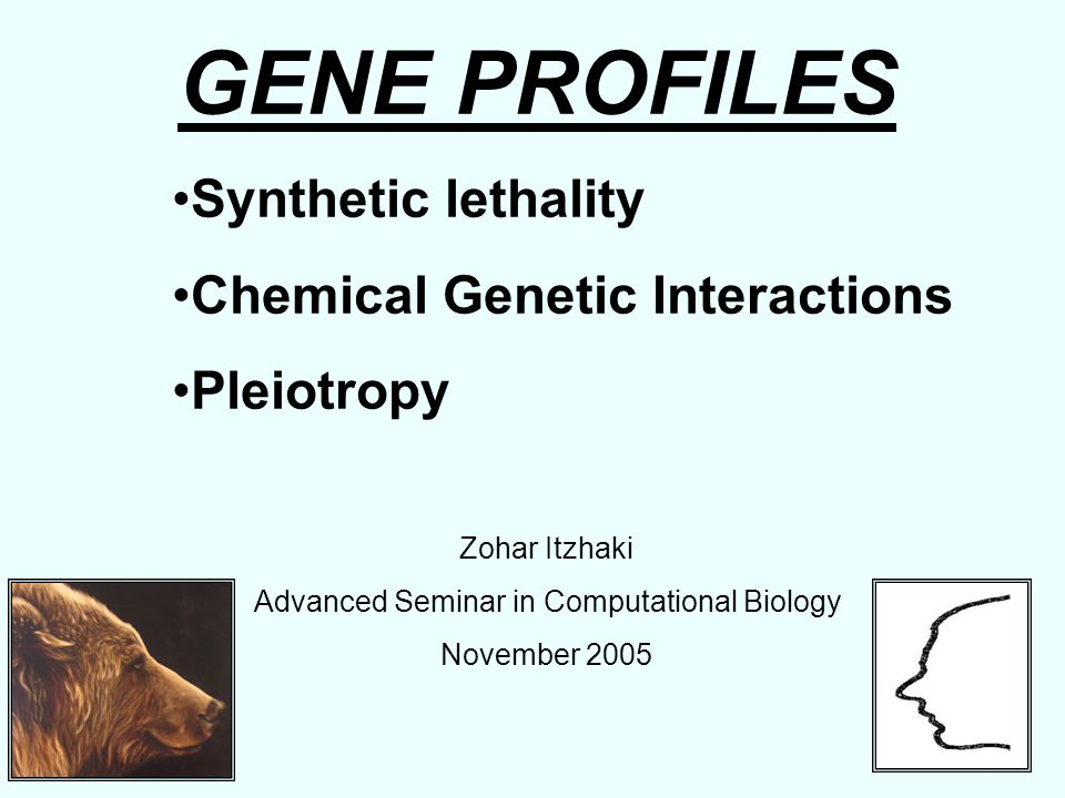 GENE PROFILES Synthetic lethality Chemical Genetic Interactions