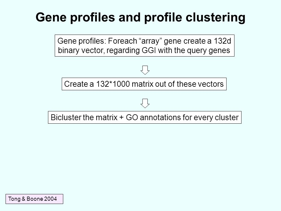 Gene profiles and profile clustering