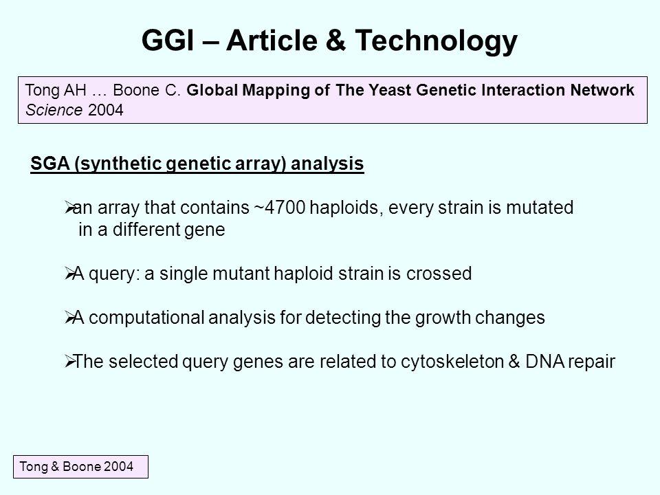GGI – Article & Technology