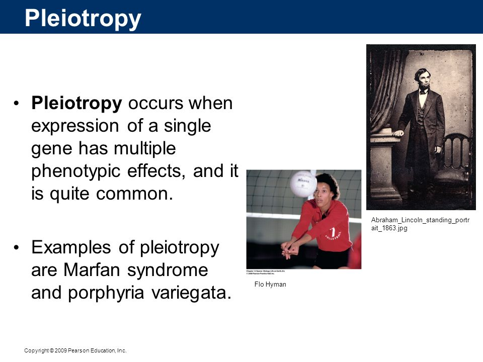 Pleiotropy Pleiotropy occurs when expression of a single gene has multiple phenotypic effects, and it is quite common.