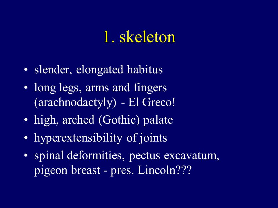 1. skeleton slender, elongated habitus