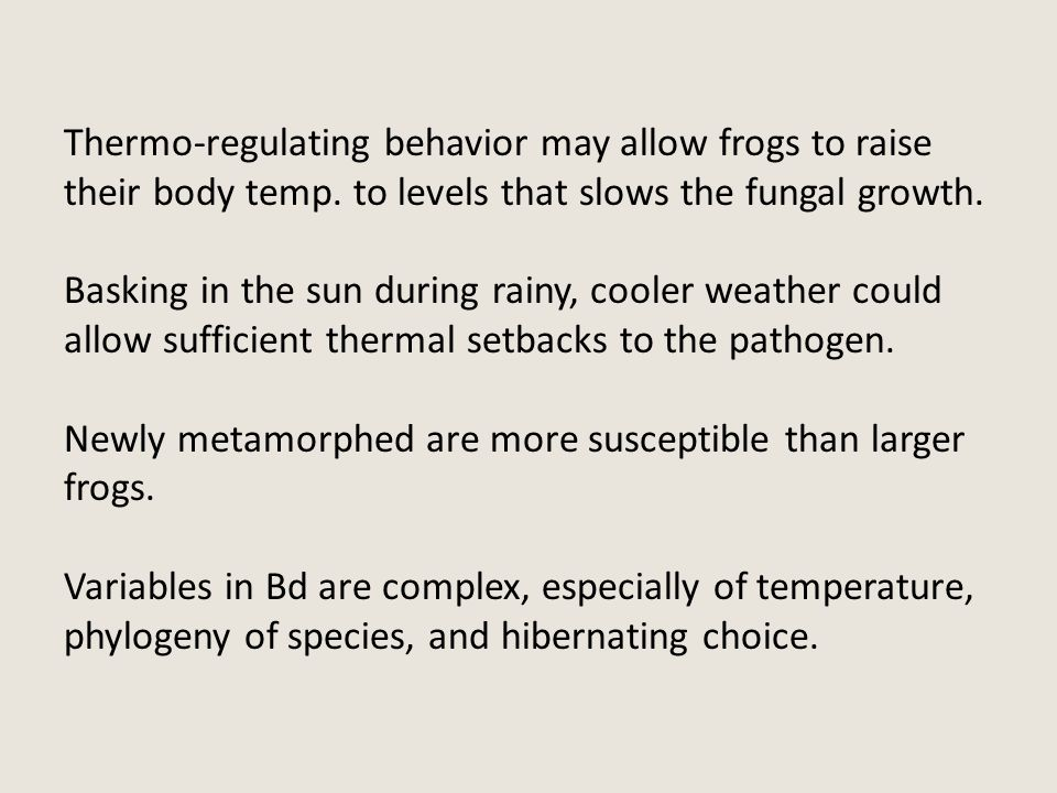 Thermo-regulating behavior may allow frogs to raise their body temp