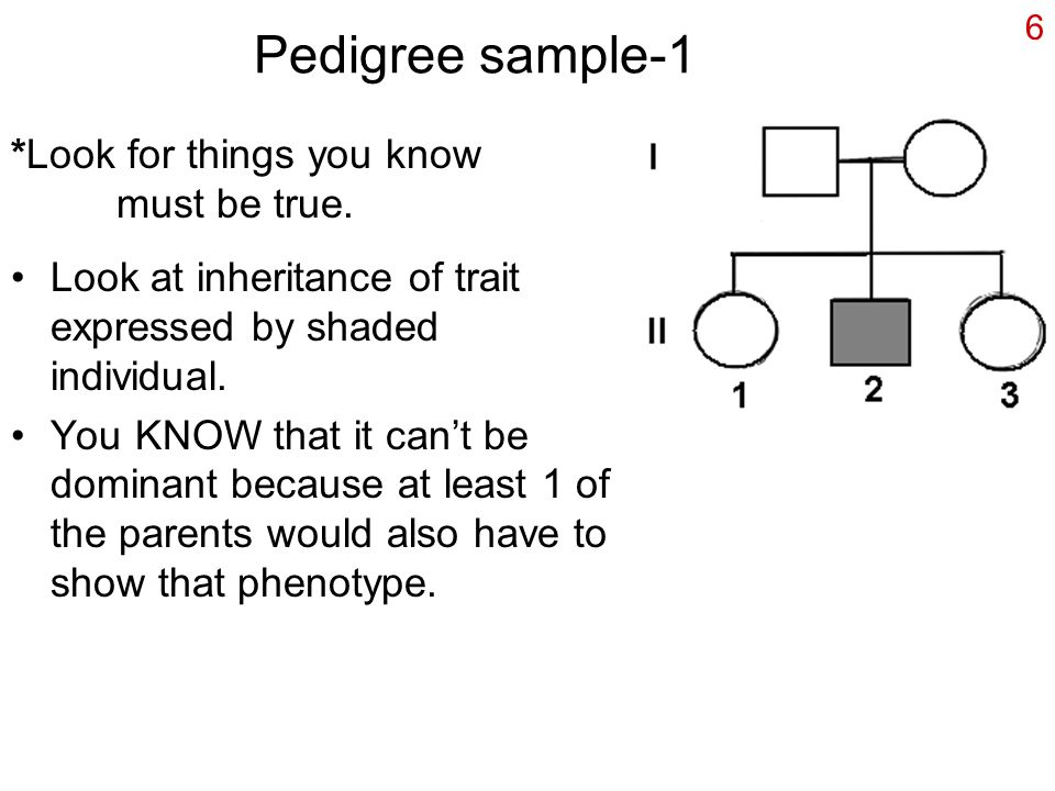 Pedigree sample-1 *Look for things you know must be true.