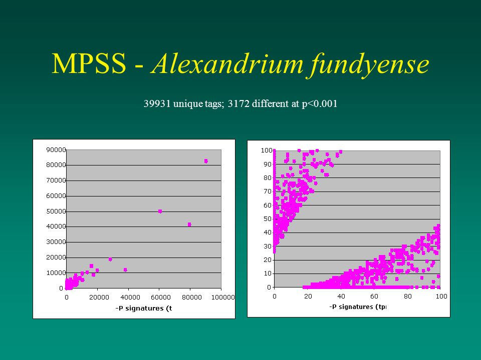 MPSS - Alexandrium fundyense
