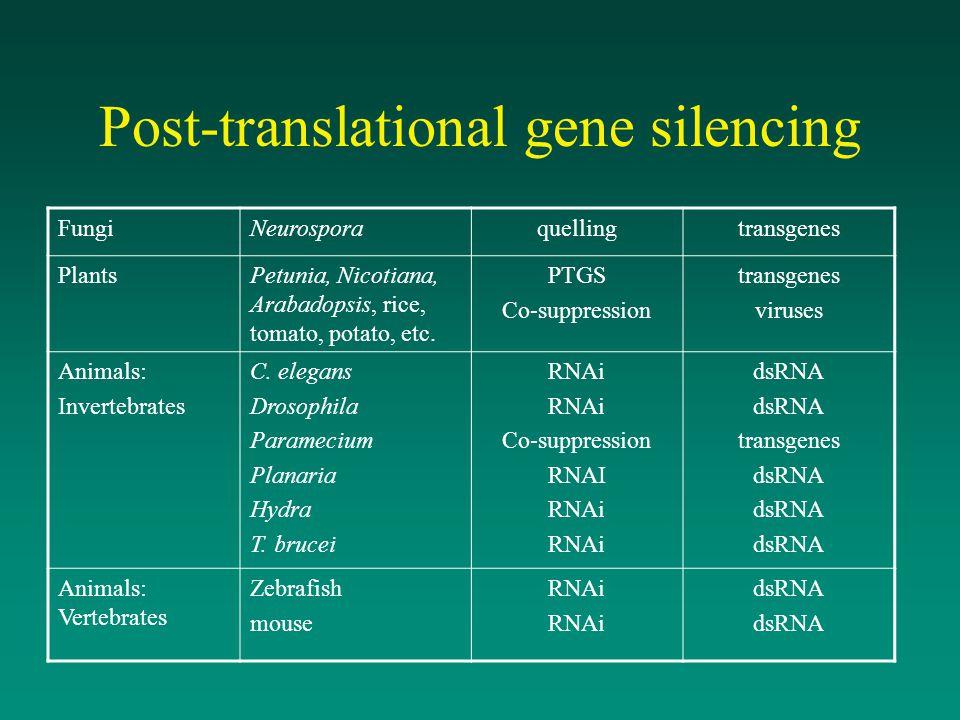 Post-translational gene silencing