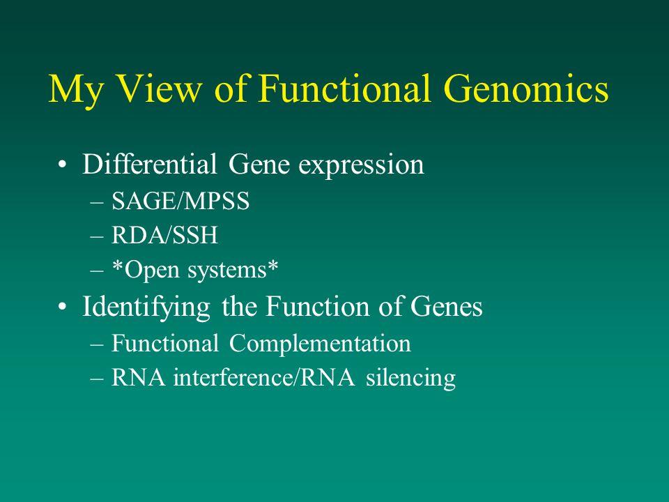 My View of Functional Genomics