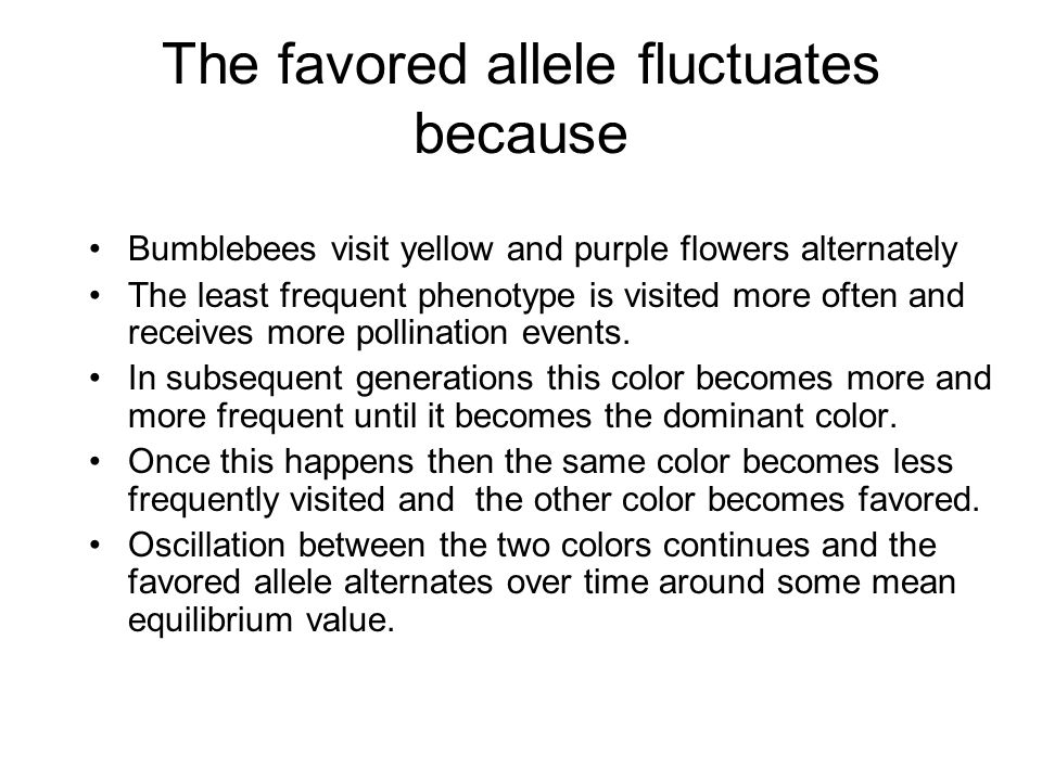 The favored allele fluctuates because
