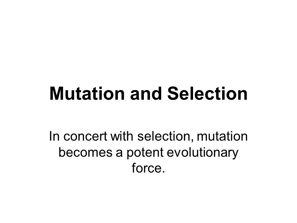 Mutation and Selection