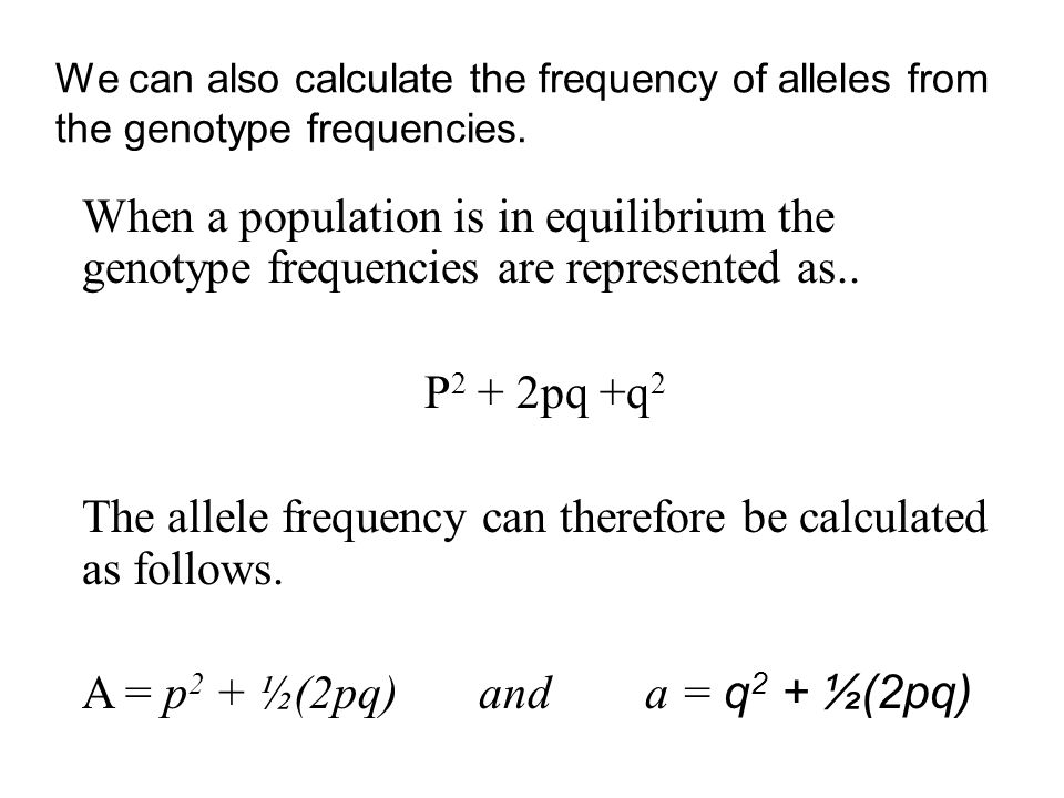 The allele frequency can therefore be calculated as follows.