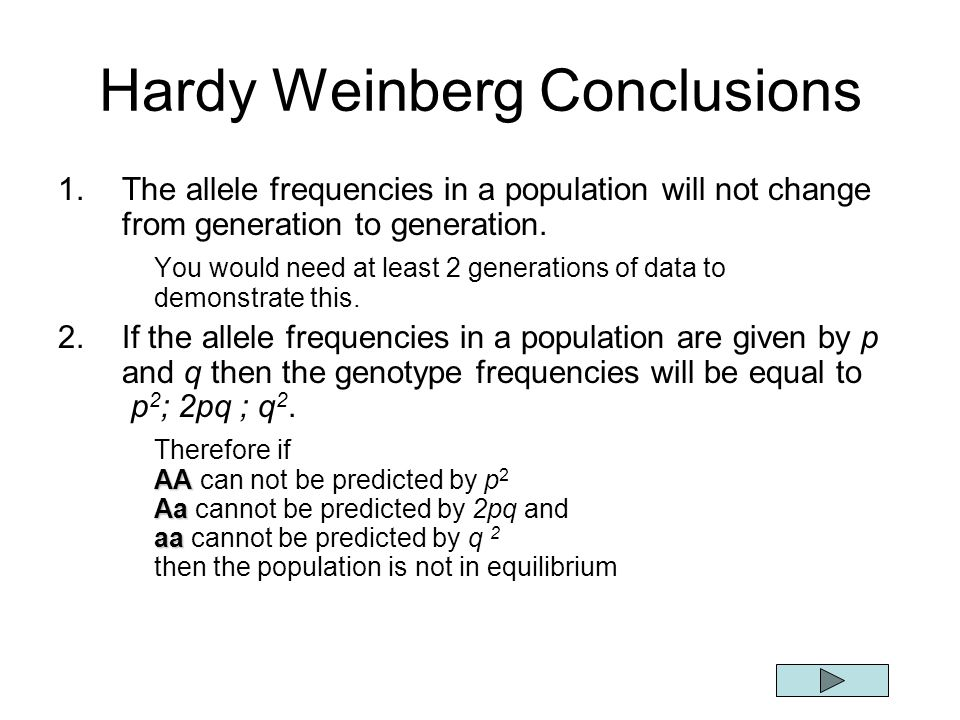 Hardy Weinberg Conclusions