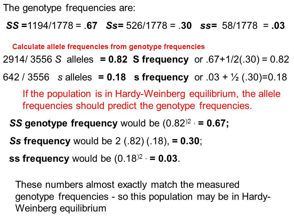The genotype frequencies are: