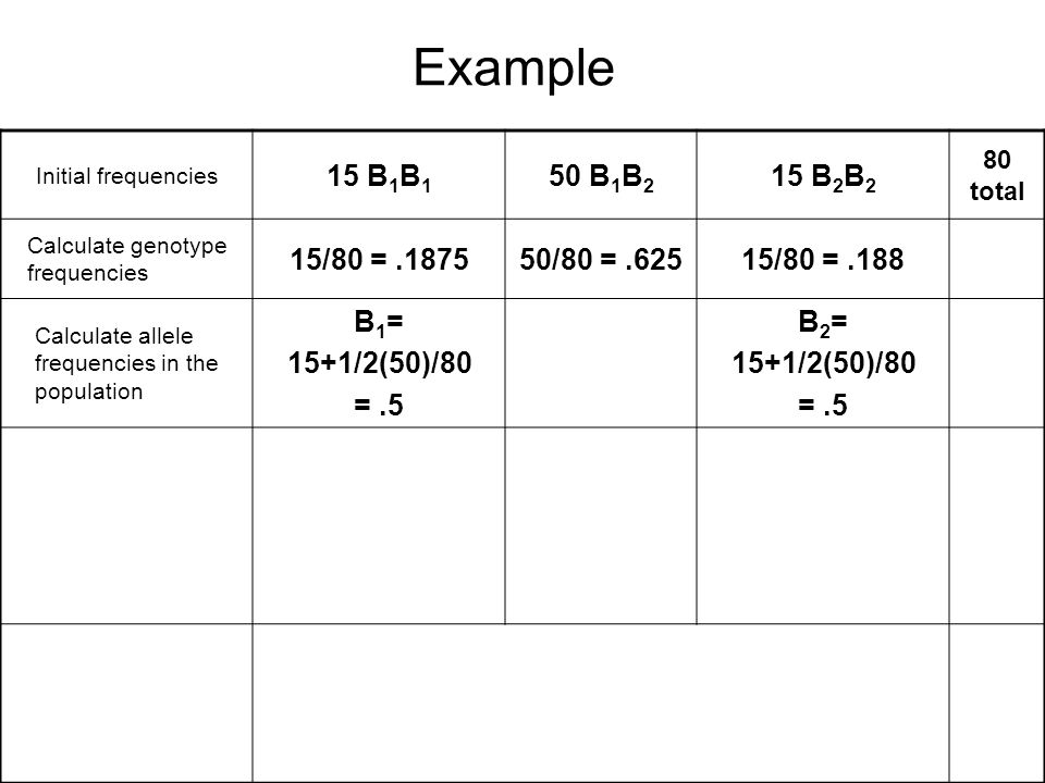 Example Initial frequencies. 15 B1B1. 50 B1B2. 15 B2B2. 80 total. Calculate genotype frequencies.