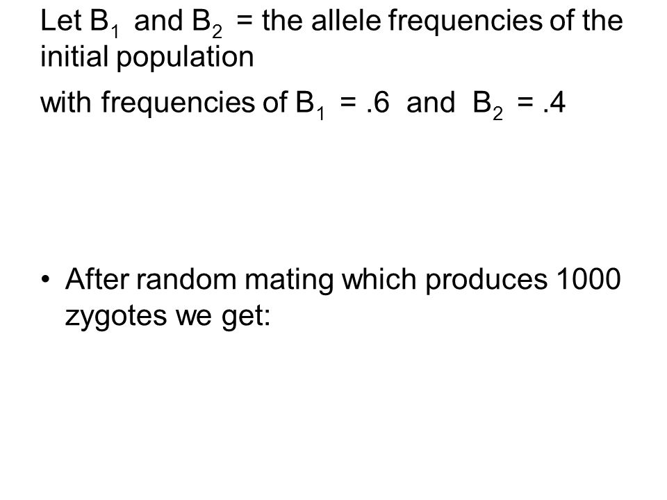 Let B1 and B2 = the allele frequencies of the initial population with frequencies of B1 = .6 and B2 = .4