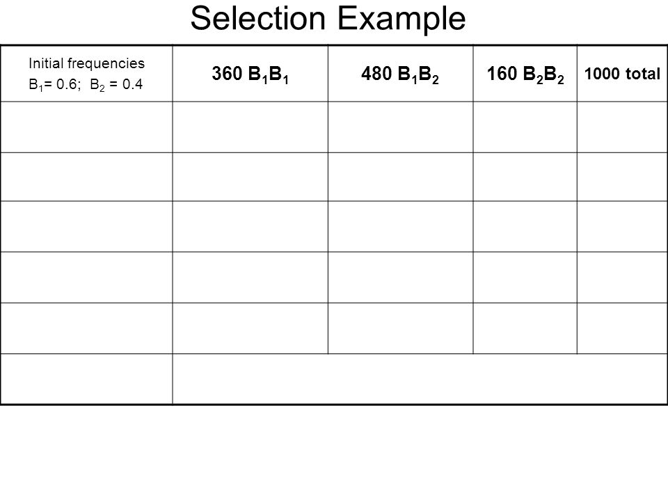 Selection Example 360 B1B1 480 B1B2 160 B2B2 1000 total