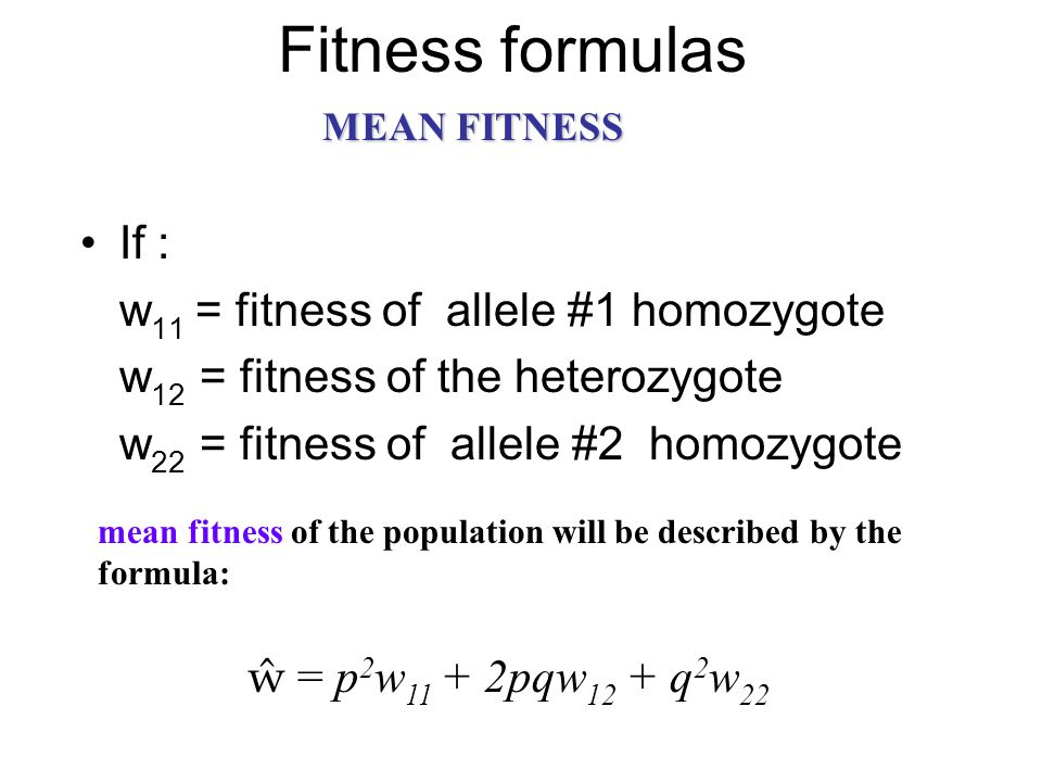 Fitness formulas If : w11 = fitness of allele #1 homozygote