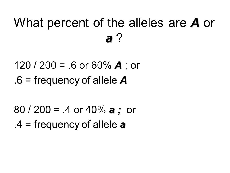 What percent of the alleles are A or a