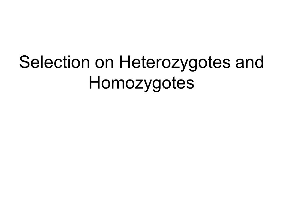 Selection on Heterozygotes and Homozygotes