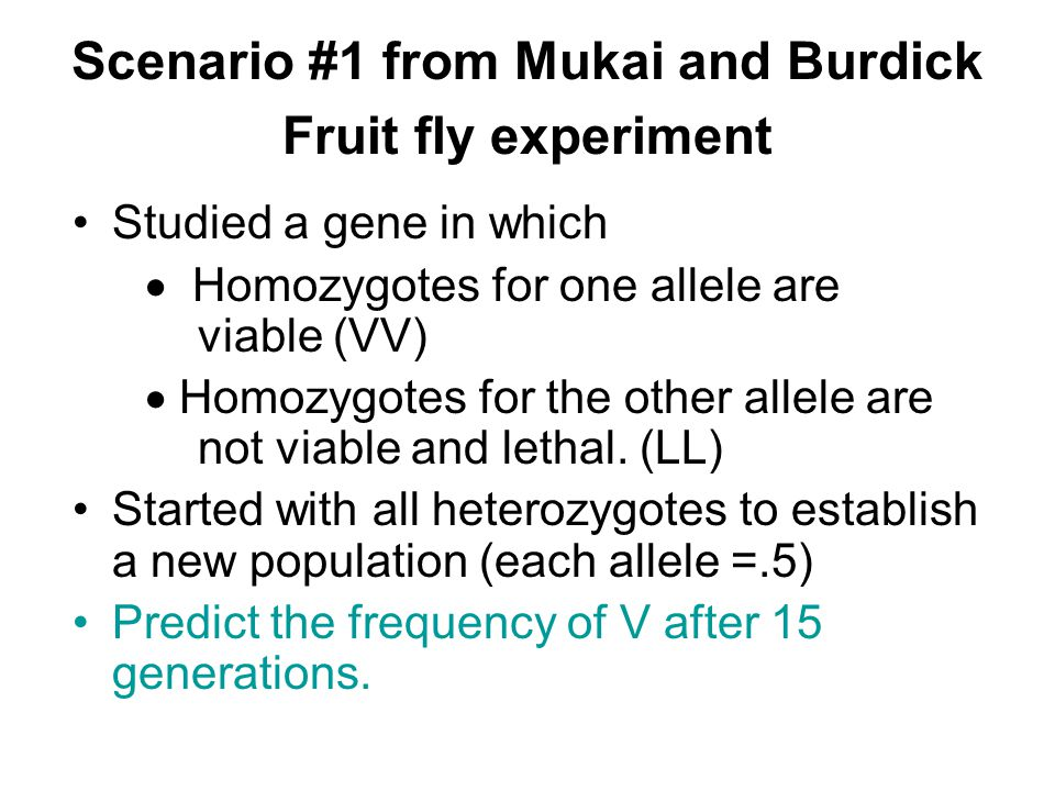 Scenario #1 from Mukai and Burdick Fruit fly experiment