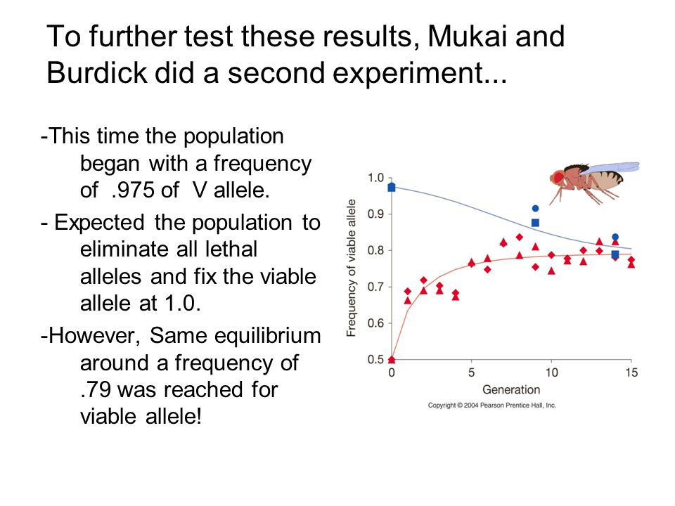 To further test these results, Mukai and Burdick did a second experiment...