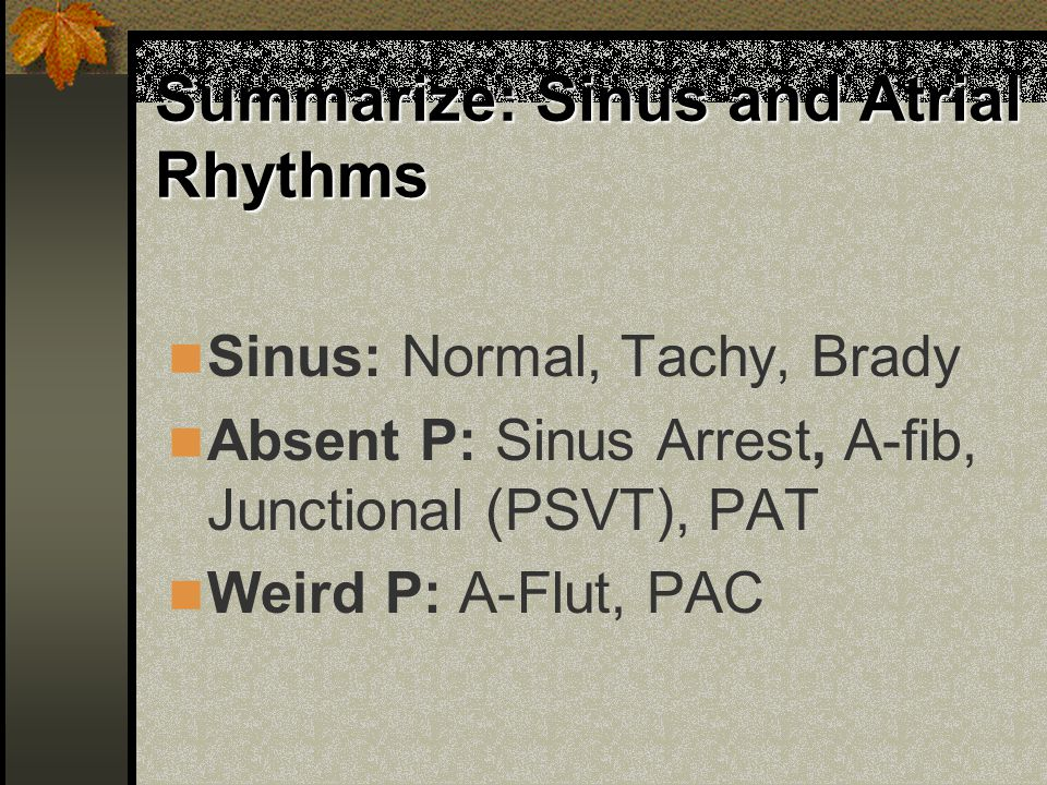 Summarize: Sinus and Atrial Rhythms