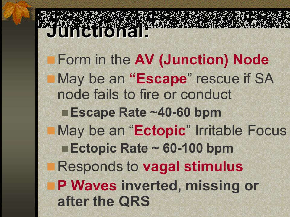Junctional: Form in the AV (Junction) Node