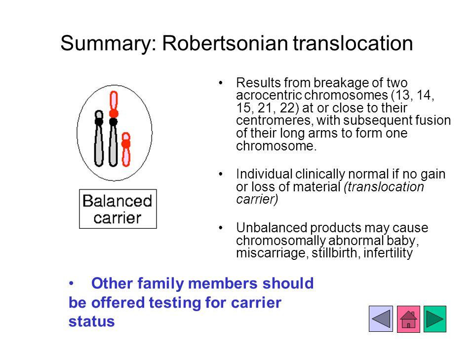 Summary: Robertsonian translocation