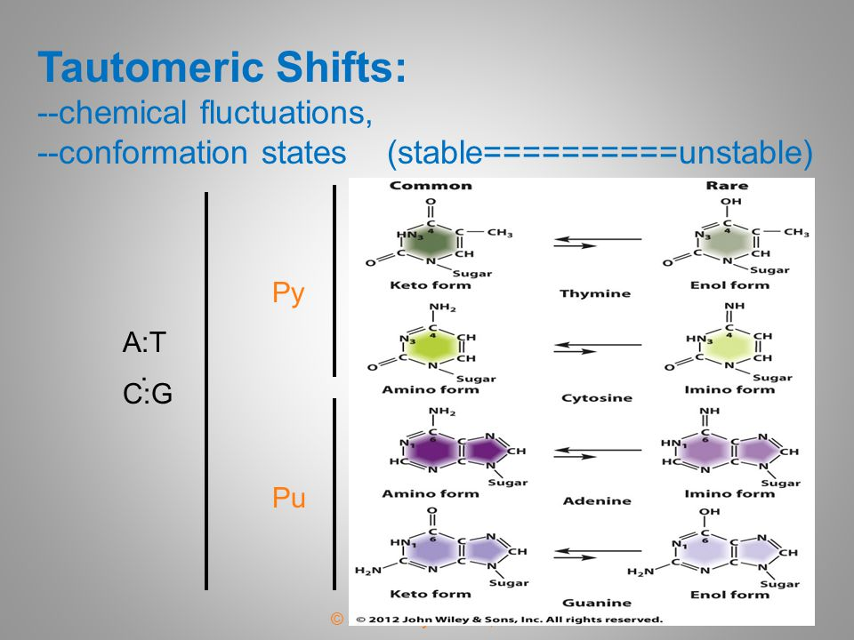 Tautomeric Shifts: --chemical fluctuations, --conformation states (stable==========unstable)