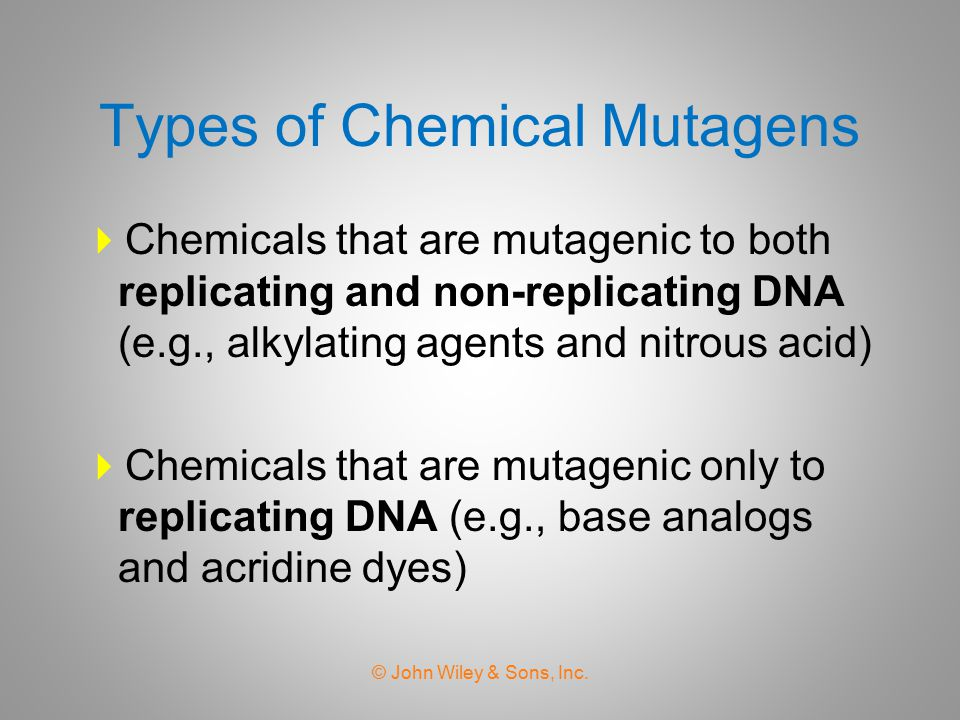 Types of Chemical Mutagens