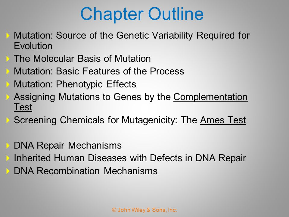 Chapter Outline Mutation: Source of the Genetic Variability Required for Evolution. The Molecular Basis of Mutation.