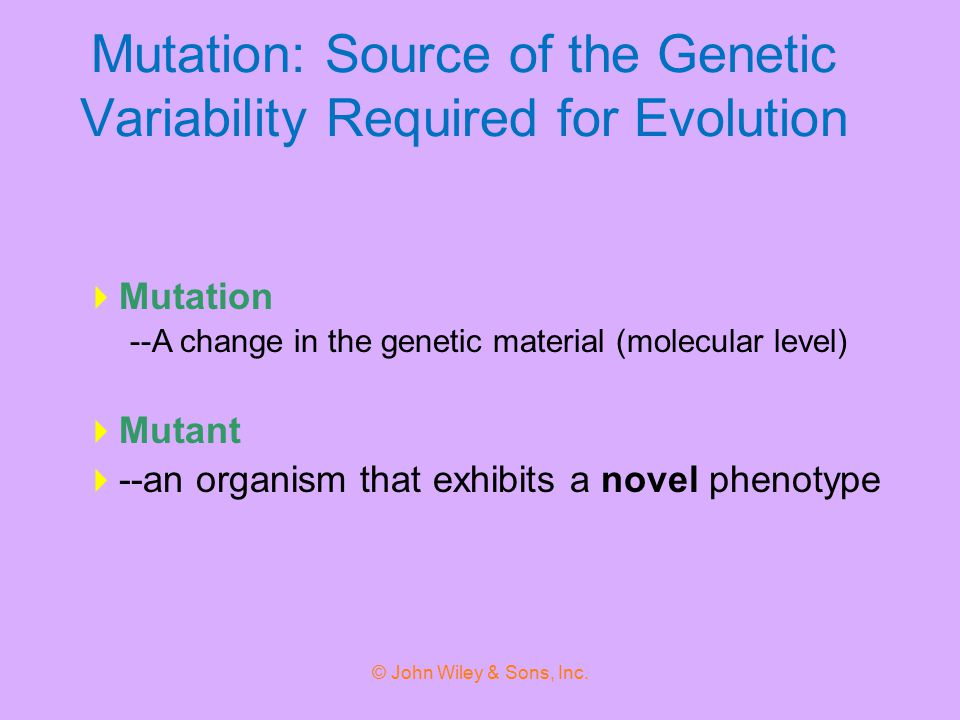 Mutation: Source of the Genetic Variability Required for Evolution