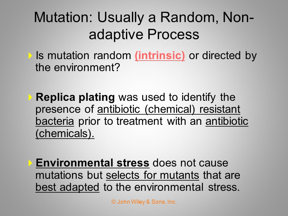 Mutation: Usually a Random, Non-adaptive Process
