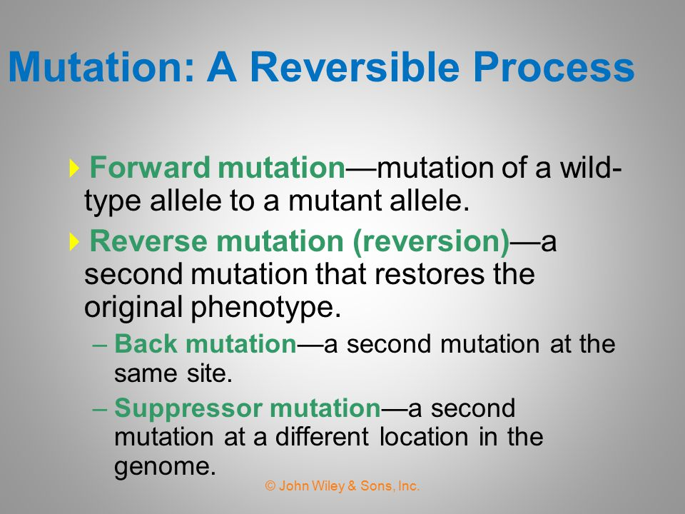 Mutation: A Reversible Process
