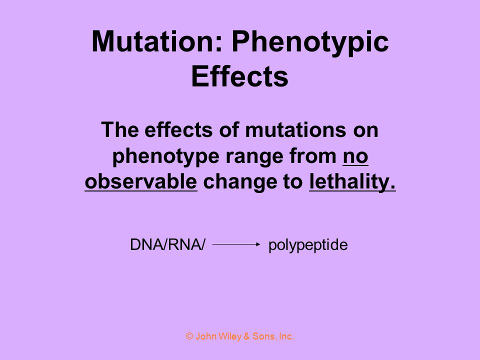 Mutation: Phenotypic Effects