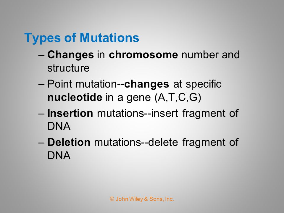 Types of Mutations Changes in chromosome number and structure