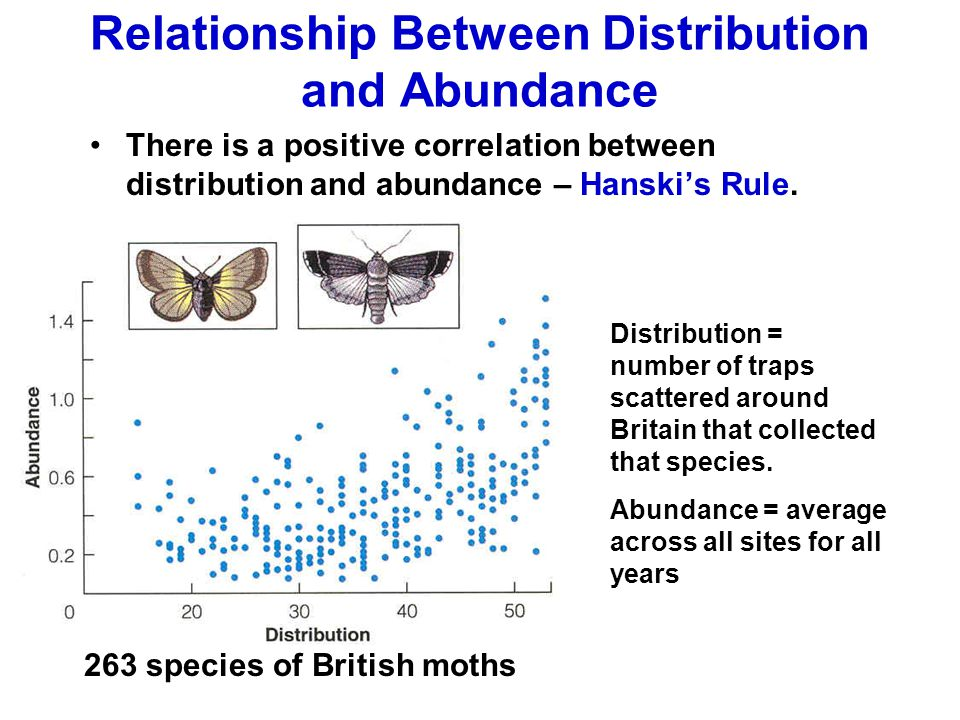 Relationship Between Distribution and Abundance