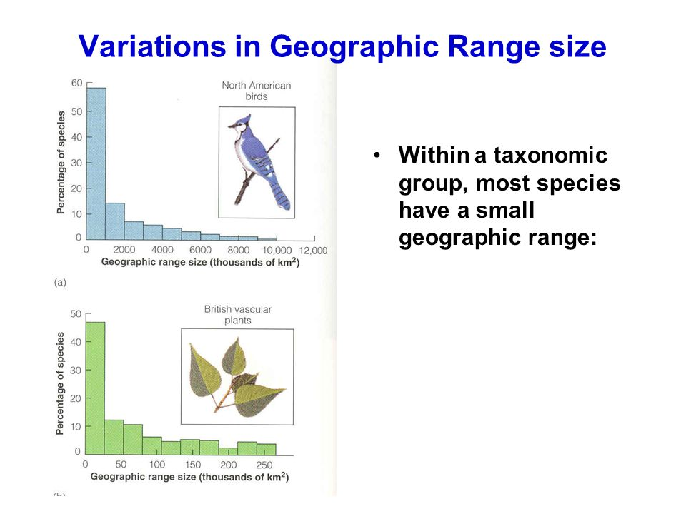 Variations in Geographic Range size