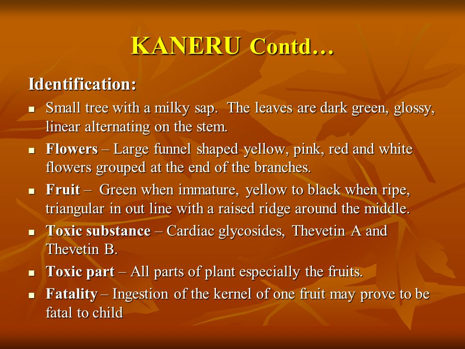 KANERU Contd… Identification: