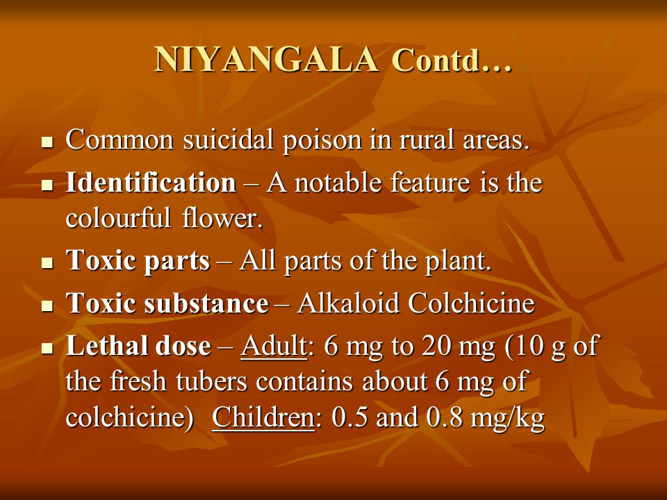 NIYANGALA Contd… Common suicidal poison in rural areas.