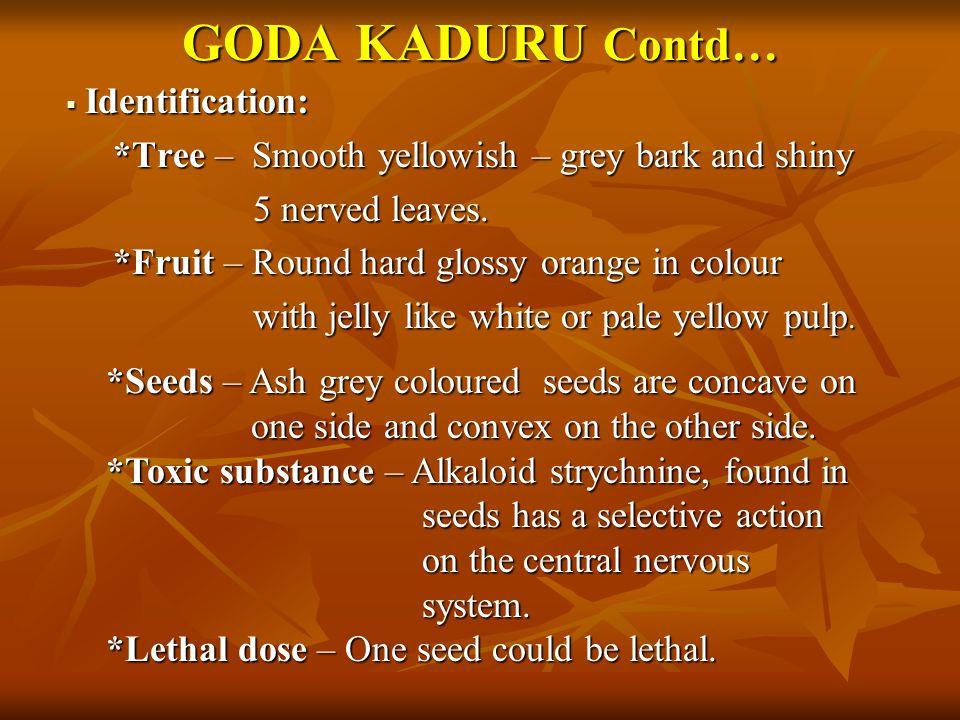 GODA KADURU Contd… Identification: