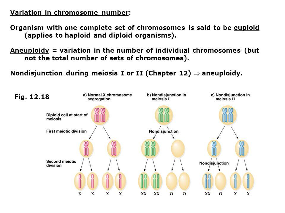 Variation in chromosome number: