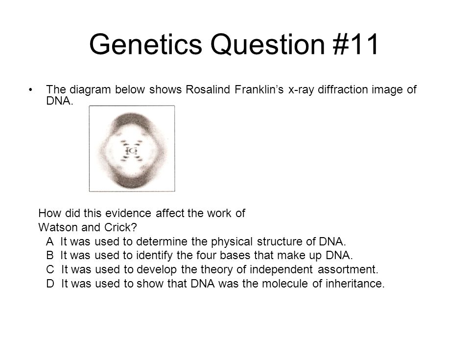 Genetics Question #11 The diagram below shows Rosalind Franklin's x-ray diffraction image of DNA. How did this evidence affect the work of.