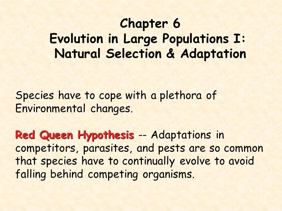 Evolution in Large Populations I: Natural Selection & Adaptation