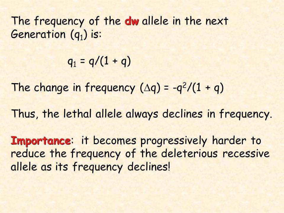 The frequency of the dw allele in the next