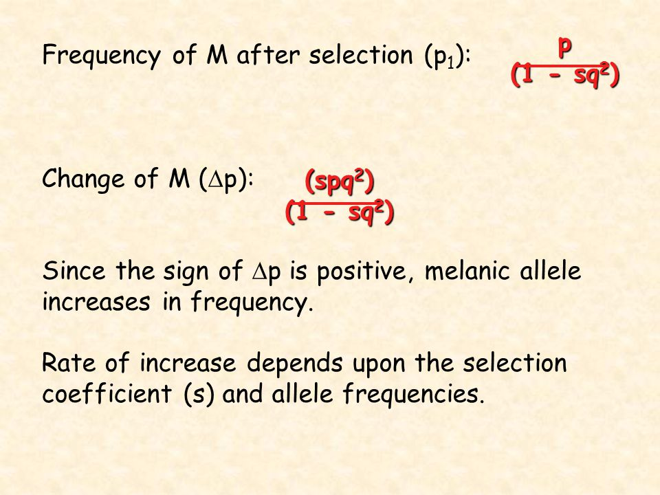 Frequency of M after selection (p1):