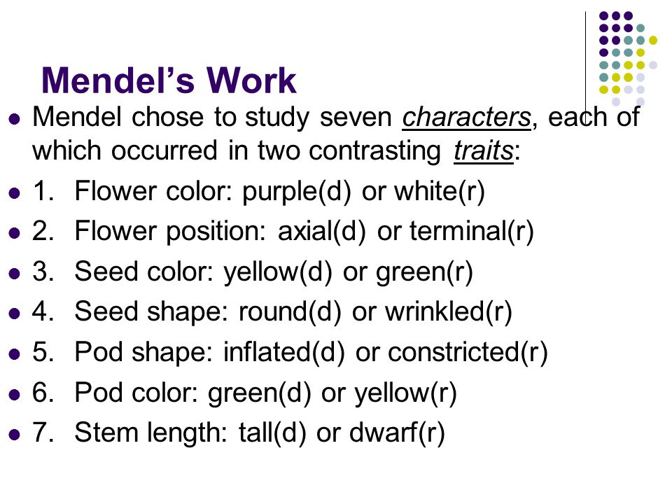 Mendel's Work Mendel chose to study seven characters, each of which occurred in two contrasting traits: