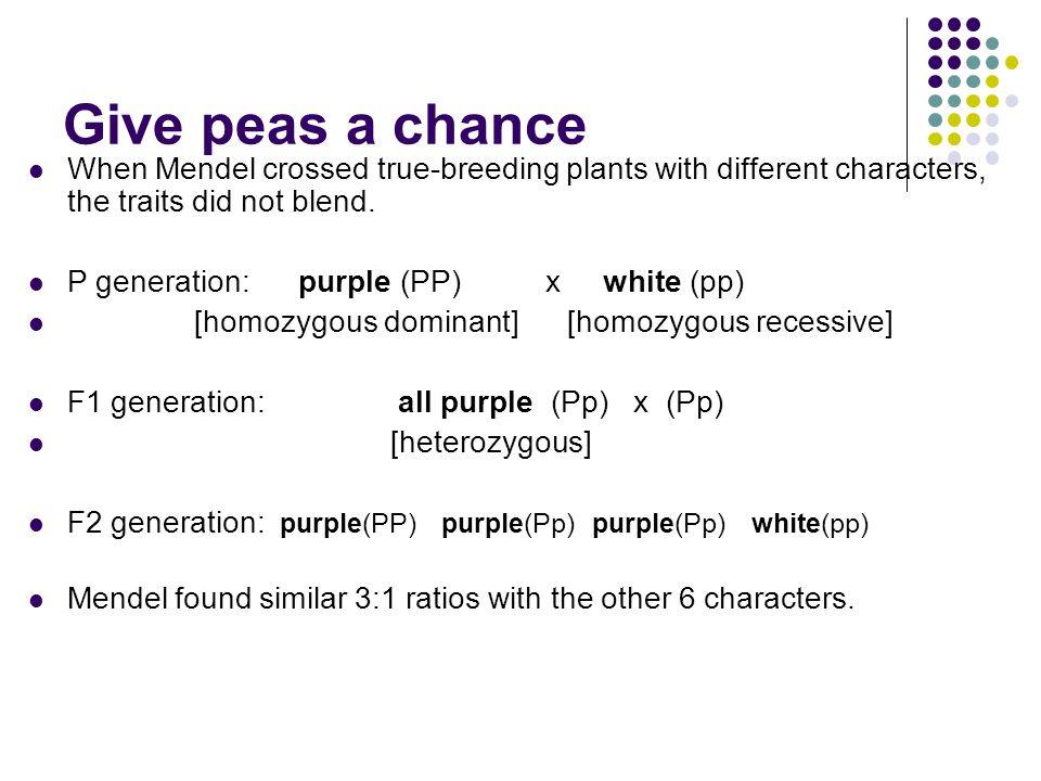 Give peas a chance When Mendel crossed true-breeding plants with different characters, the traits did not blend.